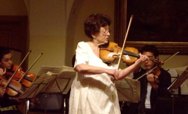Dina Schneiderman
