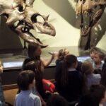 Посещение в Природо-научния музей по повод Международния ден на екскурзовода