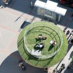 Практики за управление и насърчаване на изкуството в публичната среда във Виена