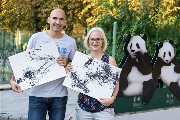 картина на пандата Янг Янг, зоологическа градина в Шьонбрун, Виена