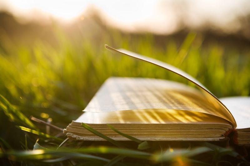 книги за лятото