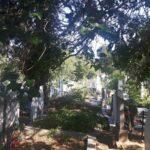Гробищата като обществено огледало
