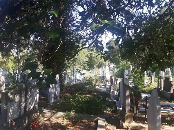 гробище в България
