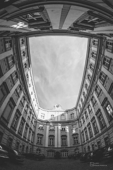 Vienna(13)