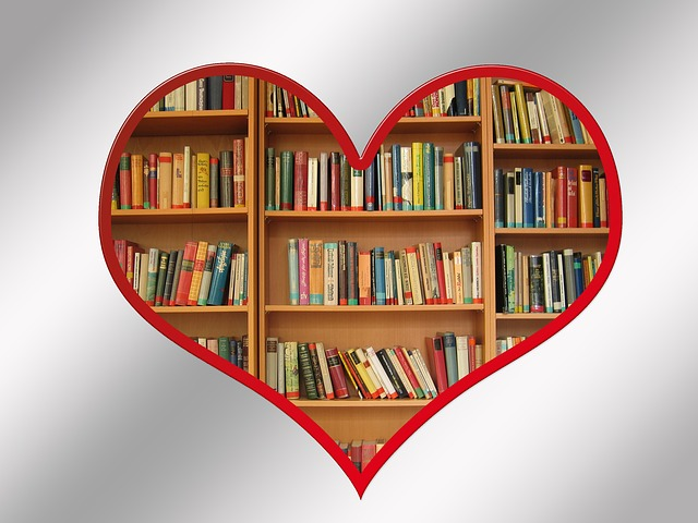 книги, Виена, библиотека