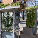 Със зелени спирки Виена се бори срещу климатичните промени