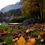 Фото Меланж: Есента в моя обектив (галерия 3)