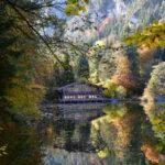 Фото Меланж: Есента в моя обектив (галерия 4)